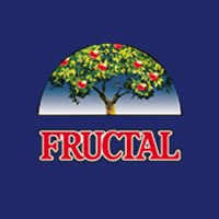 Idea&Fructal Dream team