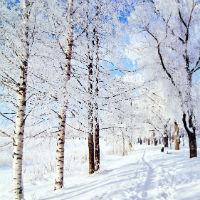 Beg na sneg