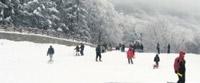 Svi na sneg